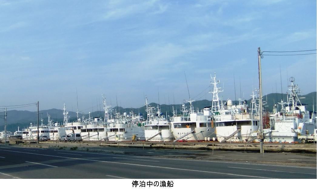 3. 停泊中の漁船.JPG