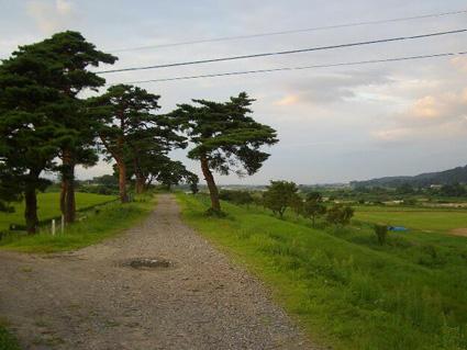 shiru006.jpg