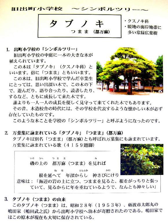 shiru091.jpg